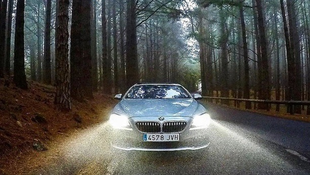bmw lights forest autumn