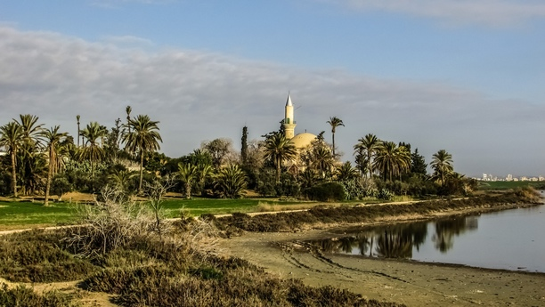 Noleggio auto a Larnaca: I servizi offerti da Sixt