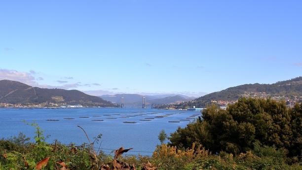 Den passenden Mietwagen in Vigo finden