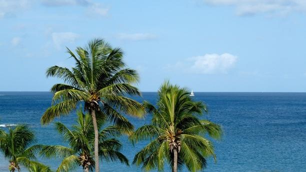 Herzlich willkommen in Gros Islet, im Norden der Karibikinsel St. Lucia