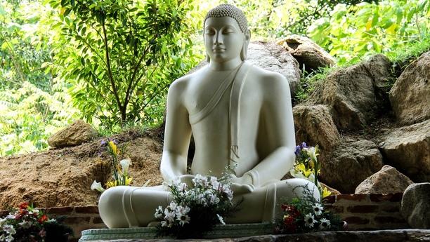 Herzlich willkommen in Colombo, der Hauptstadt von Sri Lanka!