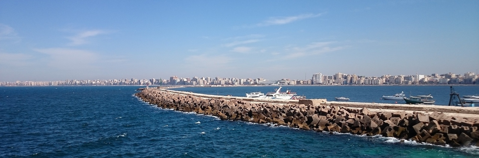 alexandria city header