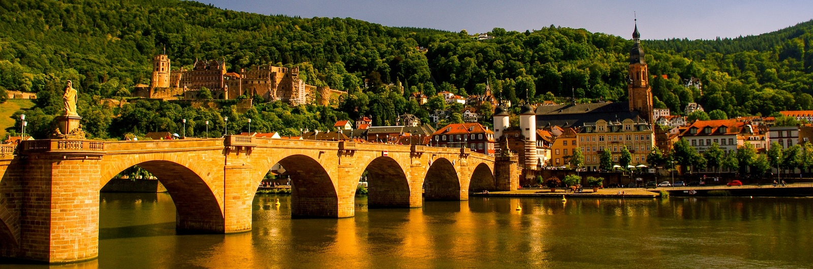 heidelberg city header