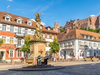 heidelberg city small
