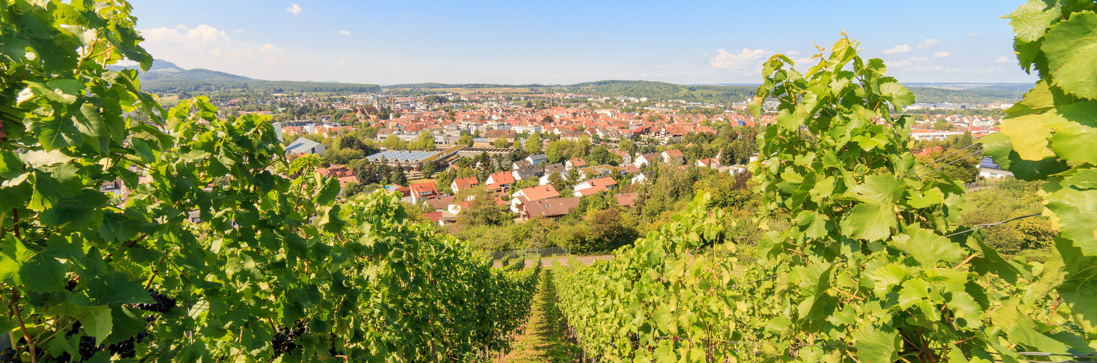 metzingen city header