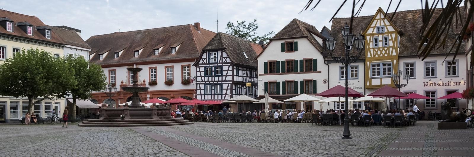 neustadt weinstrasse city header