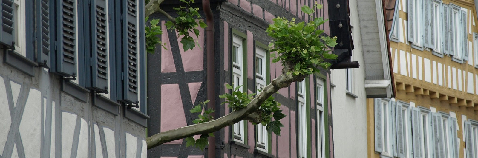 Waiblingen city header