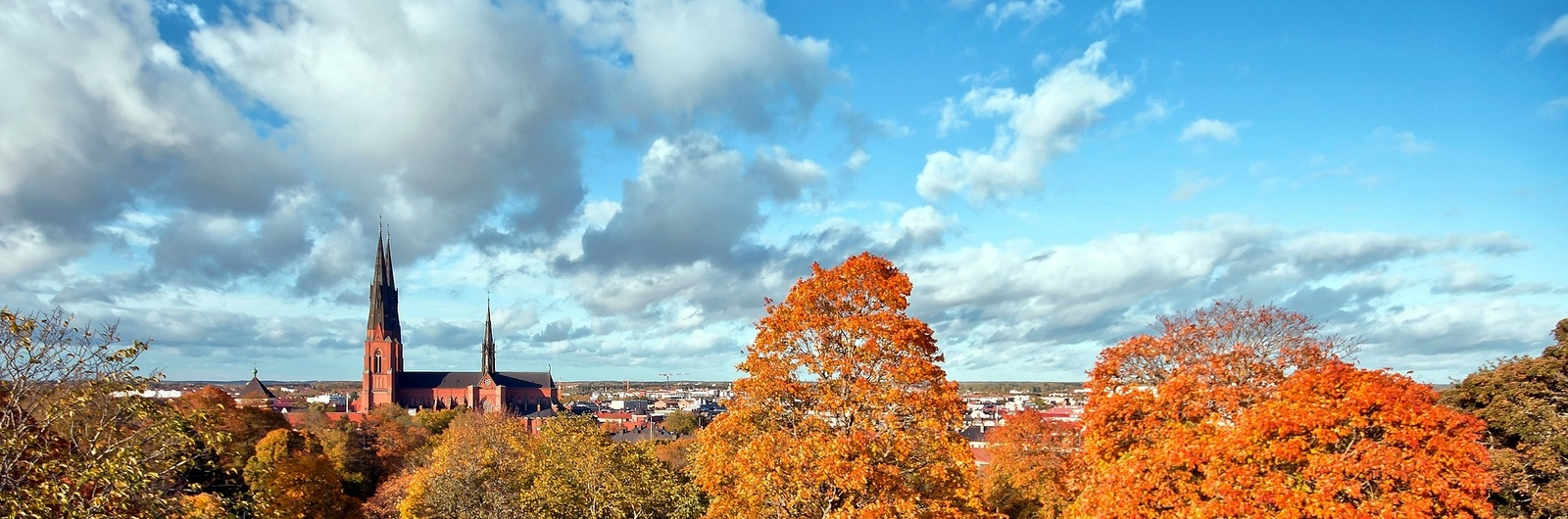 uppsala city header