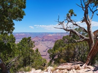 grand canyon region small1