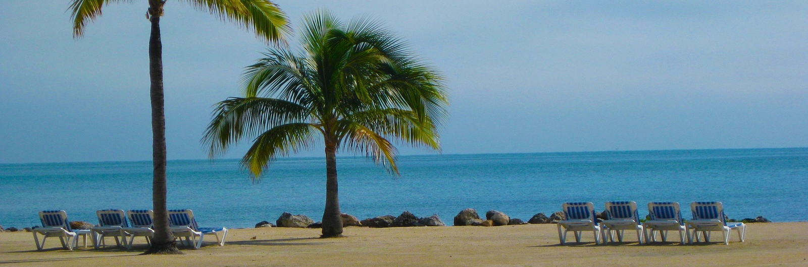palm beach city header