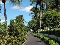 palm beach city small