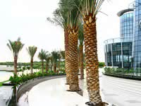 abudhabi city small2
