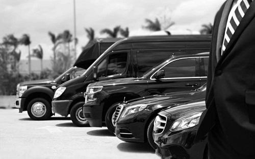 Variety of Vehicles